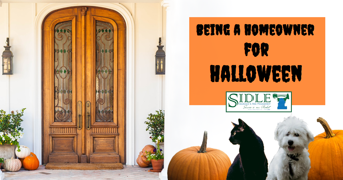 Photo for Being a Homeowner For Halloween Blog