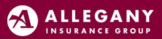 Button to make a payment with Allegany Insurance Group